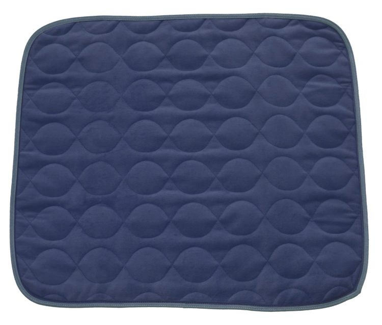 blue quilted chair pad