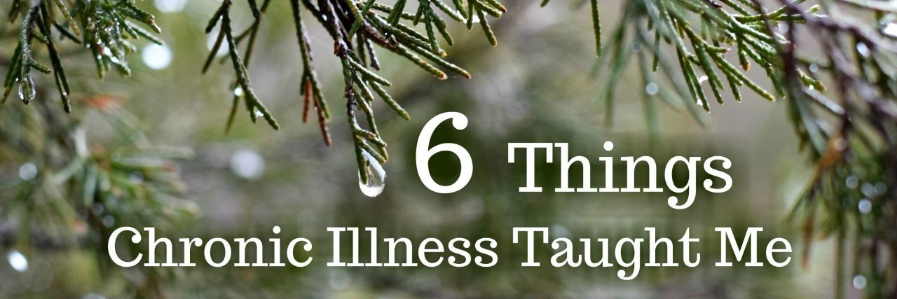 "An image focusing on tree branches with water dripping off of them, featuring the words, ""6 Things Chronic Illness Taught Me."""