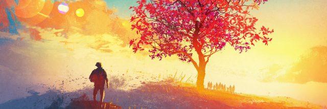 A man looking at a tree