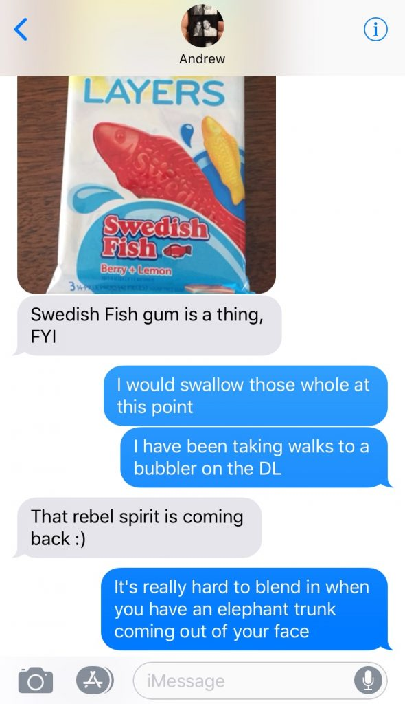the author's friend texting her about swedish fish gum