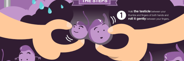part of an infographic that shows how to do a testicular cancer test