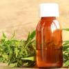 CBD oil and the marijuana plant