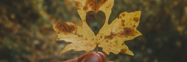 fall leaf held against sunset with heart cut out of it