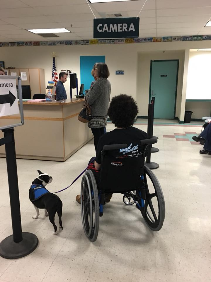 man in a wheelchair with his service dog