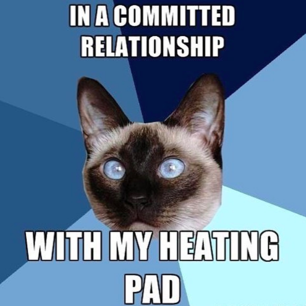 in a committed relationship with my heating pad