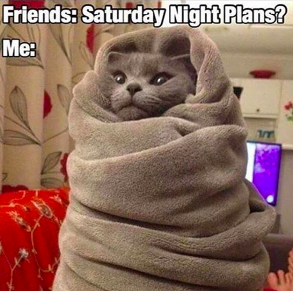 friends: saturday night plans: me: *cat wrapped in blanket*