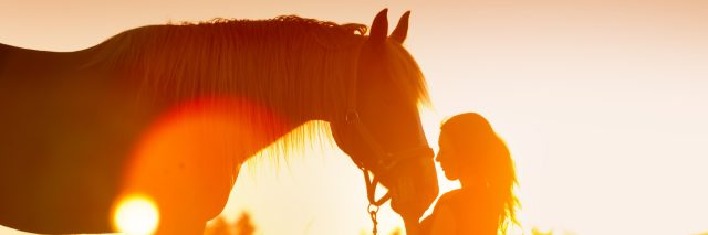 Beautiful silhouette of woman and horse at sunset.