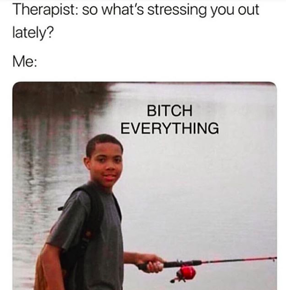 therapist: so what's stressing you out lately? Me: Everything (meme)
