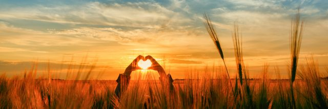 A woman standing in a flied, making a heart shape with her hands as the sun is setting.
