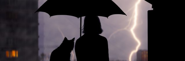 A silhouette of a woman and cat outside, under an umbrella, watching a lightening storm.