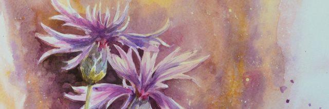 Painting of cornflowers.