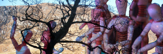 multiple human like figures superimposed over a scene of tree branches and mountains