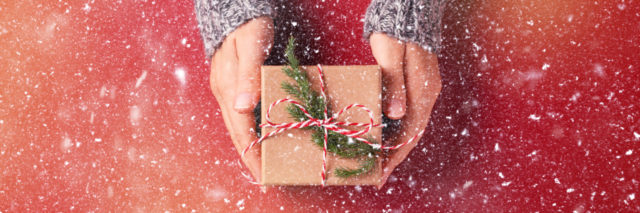 snowy picture of a woman's hands in a silver sweater giving a brown paper wrapped present