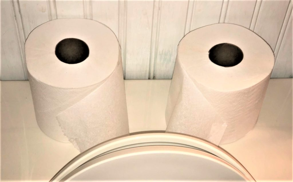 photo of toilet rolls which look like eyes, and toilet lid which looks like a mouth