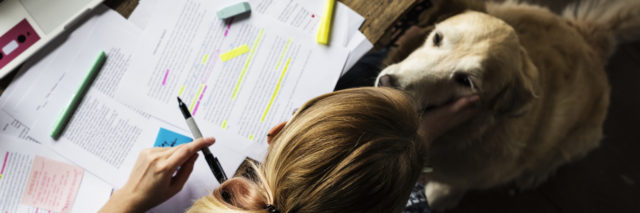 A woman with school work on her desk, looking down at a dog