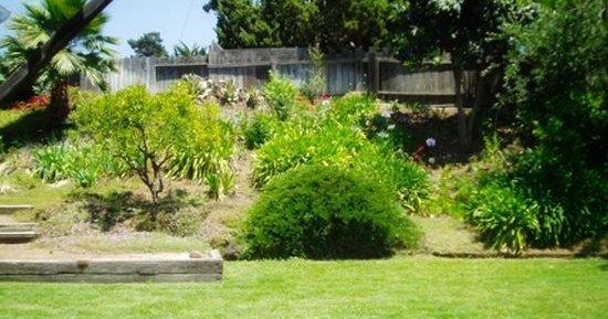 Grandpa's backyard now.