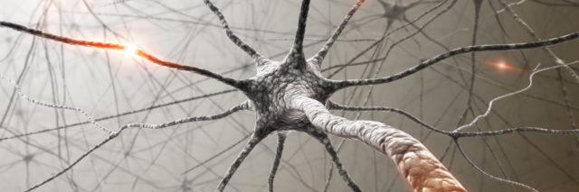 black and white neuron