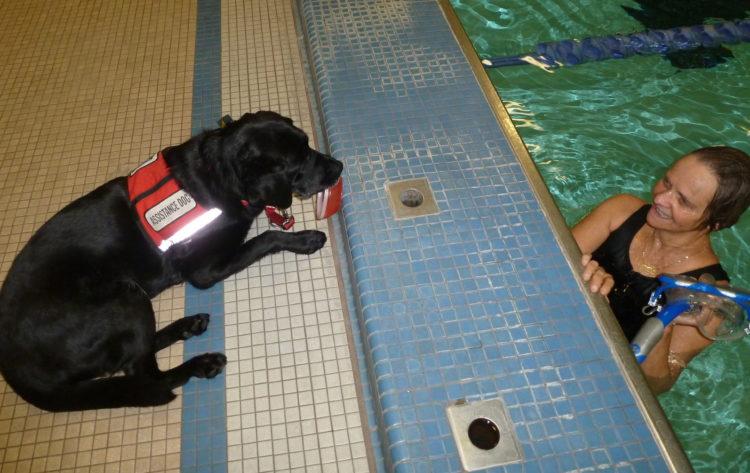 Maggie watches Ellen swinging in the pool.