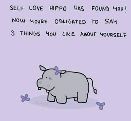 """cartoon drawing of a gray hippo on a purple background with the caption """"self love hippo found you! Now you're obligated to say 3 things you like about yourself"""""""